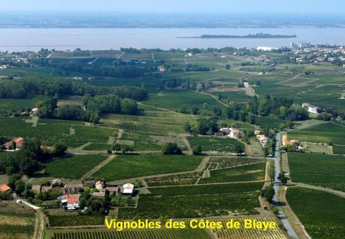vignobles cotes de Blaye