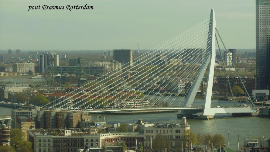 098 Rotterdam pont Erasmus (2)