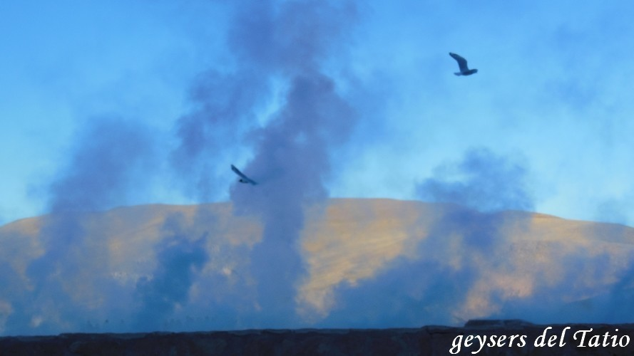 geysers el tatio0001