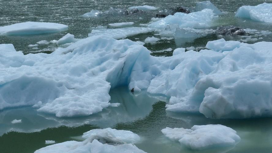 glacier balmaceda serrano0052