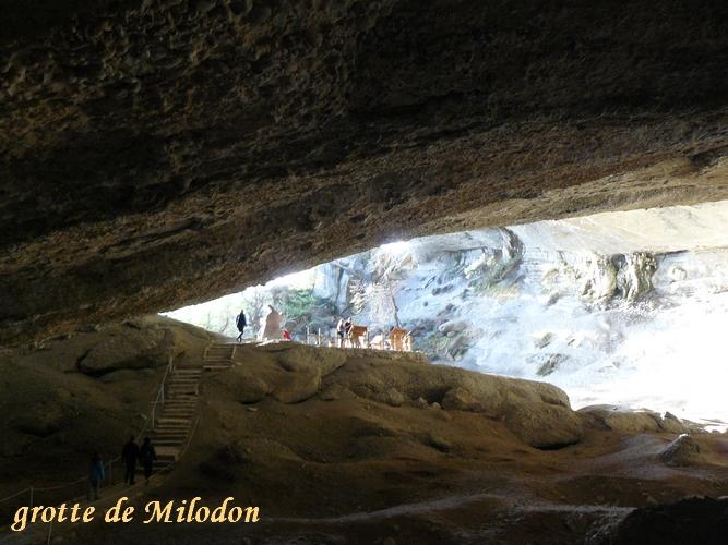 grotte milodon(10)