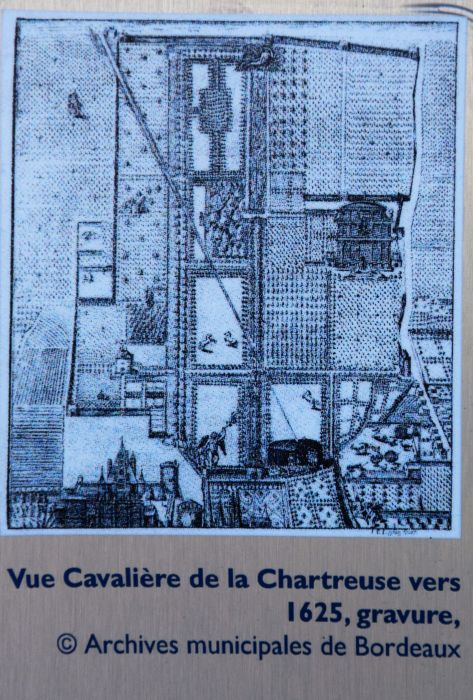 20-chartreuse