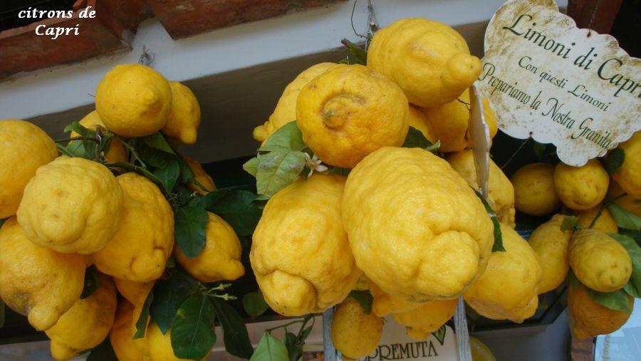 02 citrons Capri