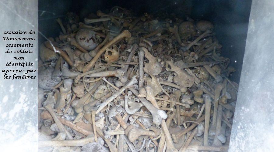 25 P1050526 ossements aperçus par fenêtres ossuaire recueillis chps de bataille des soldats non dentifiés (17)
