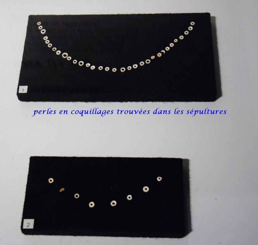 13 perles coquillages