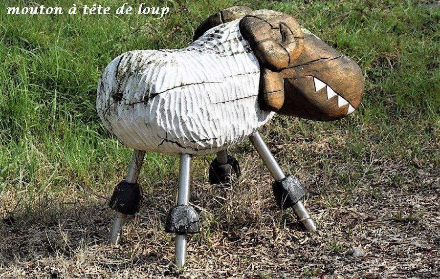 06 mouton tête de loup